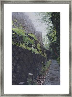 Afternoon Light Framed Print by Masami Iida
