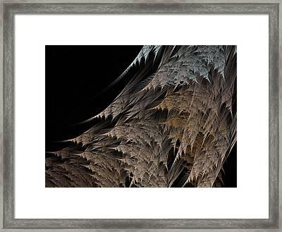 Ferns Framed Print by Michele Caporaso