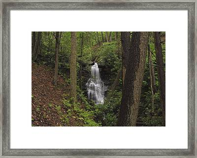 Forest Waterfall Framed Print