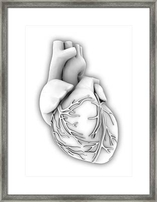 Heart, Computer Artwork Framed Print