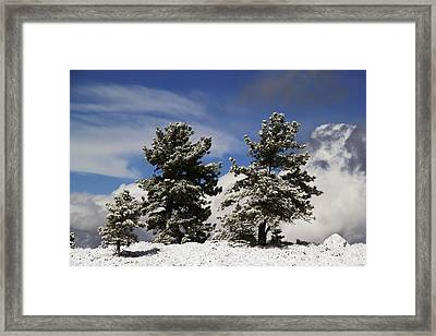 Rocky Mountain Fall Framed Print by Mark Smith