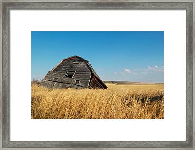 A Barn Slowly Crumbles In A Prairie Framed Print by Pete Ryan