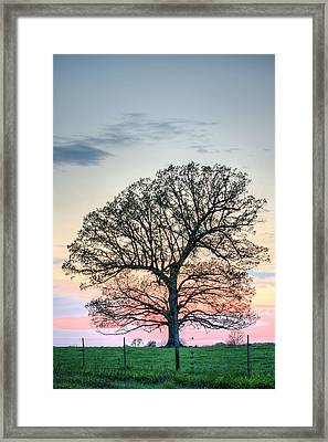 A Beautiful Evening Framed Print by JC Findley