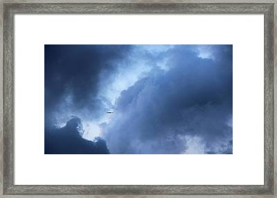 A Bird Flying In Cloudy Sky Framed Print by Gal Ashkenazi