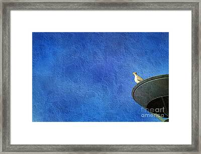 A Birds Eye View Framed Print by Andee Design
