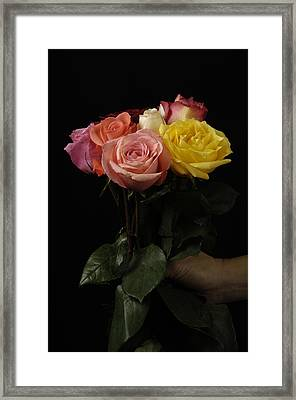 A Bouquet Of Roses Rosaceae Framed Print by Joel Sartore
