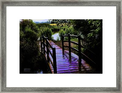 Framed Print featuring the photograph A Bridge Over Troubled Water by Itzhak Richter