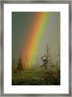 A Brilliantly Colored Rainbow Ends Framed Print by Norbert Rosing