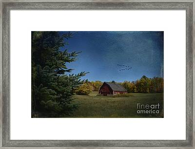 A Brush With Fall Framed Print by The Stone Age