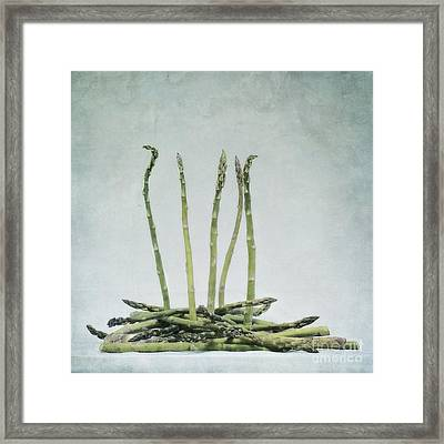 A Bunch Of Asparagus Framed Print by Priska Wettstein