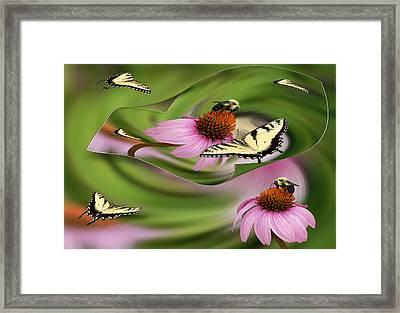 A Busy Garden Framed Print
