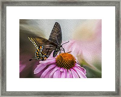 A Butterfly's Magical Moment Framed Print