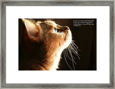 A Cat Prayer Framed Print by Wendi Matson