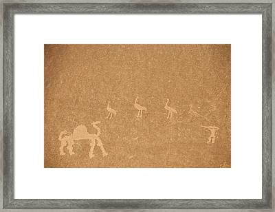 A Close View Of Ancient Petroglyphs Framed Print