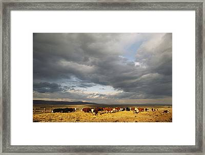 A Cloud-filled Sky Over A Yakima Valley Framed Print by Sisse Brimberg