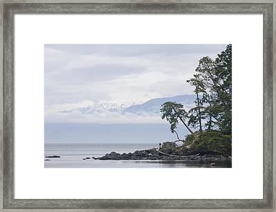 A Cloudy Spring Day On Vancouver Island Framed Print by Taylor S. Kennedy