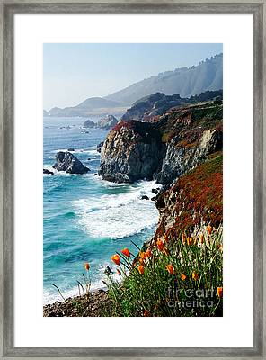 A Coastal High Framed Print