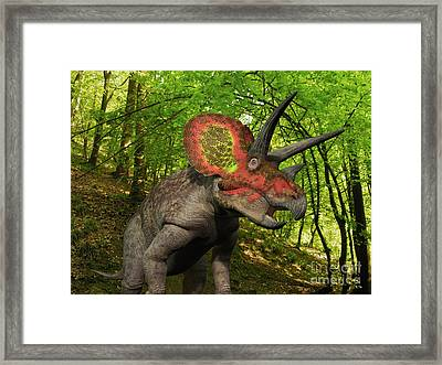 A Colorful Triceratops Wanders Framed Print by Walter Myers