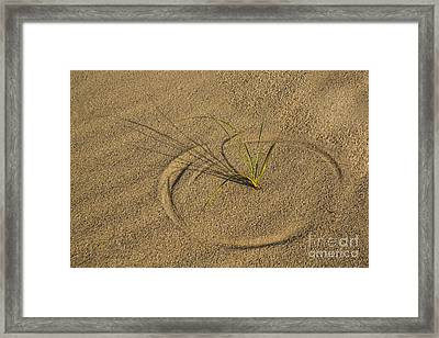 A Compass In The Sand Framed Print