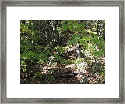 A Country Path Framed Print by Kim Galluzzo Wozniak