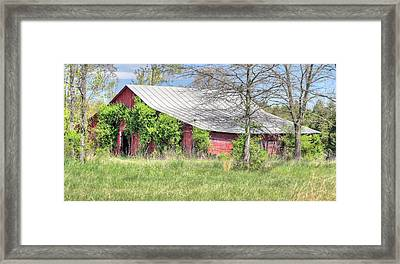 A Country Spring Framed Print