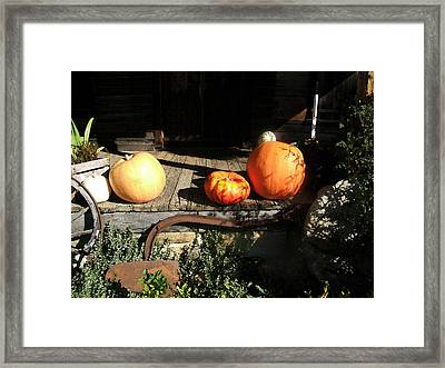 Framed Print featuring the photograph A Country Thanksgiving by George Bostian