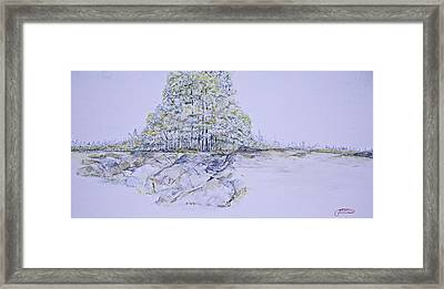 A Day In Central Park Framed Print