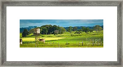 A Day In The Country Framed Print