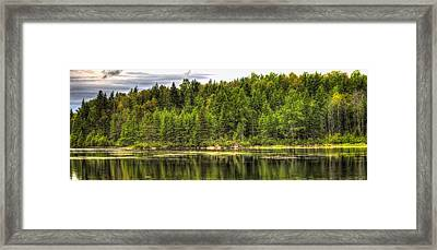 A Day In The Forest Of Maine Framed Print by Gary Smith
