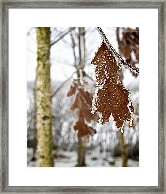 A Definite Chill Framed Print by Odd Jeppesen