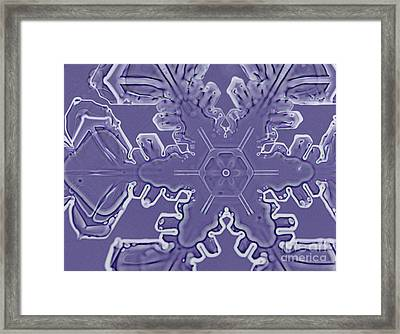 A Dendritic Snowflake Framed Print by Ted Kinsman