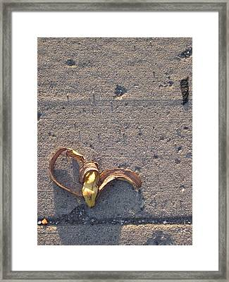 A Discarded Banana Is A Joy Forever Framed Print by Guy Ricketts