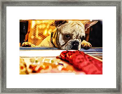 A Dog And His Cookies Framed Print