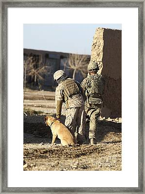 A Dog Handler Takes Care Framed Print by Stocktrek Images