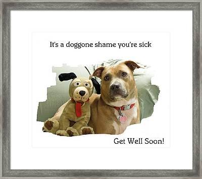 A Doggone Shame Framed Print