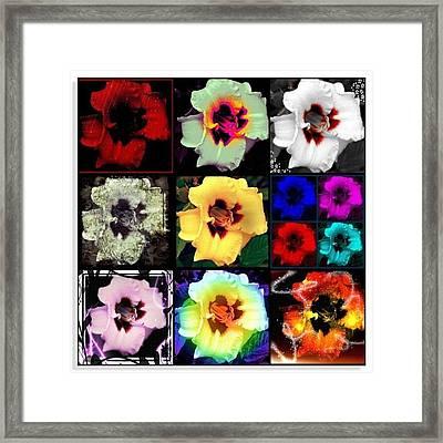 A Dozen Blooms Framed Print