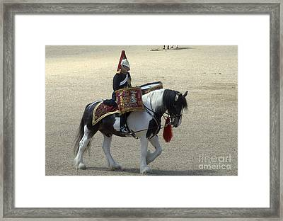 A Drum Horse Of The Household Cavalry Framed Print