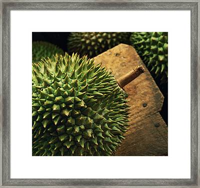 A Durian Fruit - Popular In South East Framed Print by Justin Guariglia
