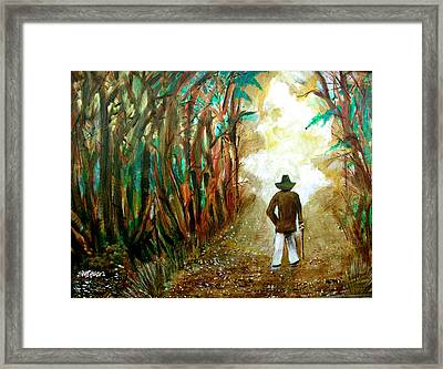 A Fall Walk In The Woods Framed Print