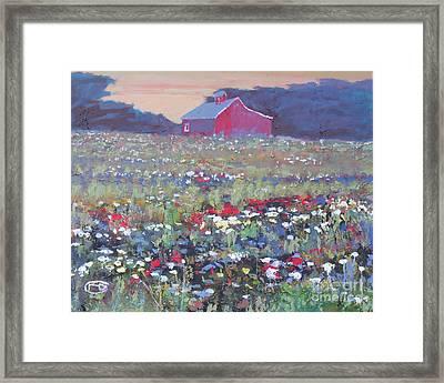 A Field Of Flowers Framed Print by Kip Decker