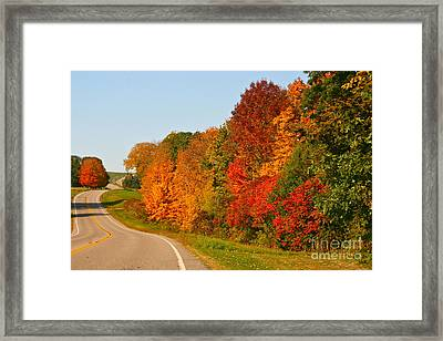 Framed Print featuring the photograph A Fine Fall Day by Joan McArthur
