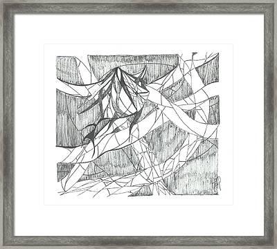 A Fish Framed Print by Robert Meszaros