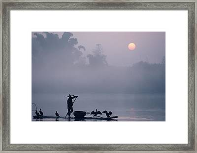 A Fisher Uses Cormorants To Capture Framed Print by Kenneth Ginn
