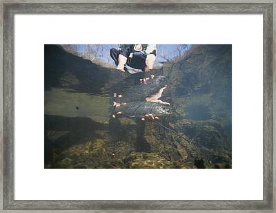 A Fisherman Releases A Rainbow Trout Framed Print by Stephen Alvarez