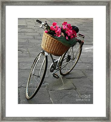 Framed Print featuring the photograph A Flower Delivery by Vivian Christopher
