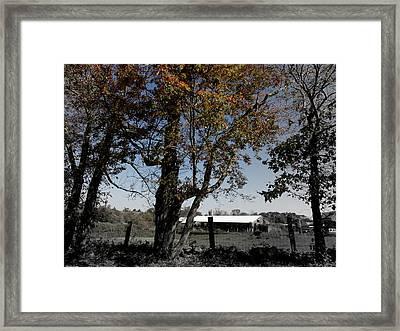 A Focal Setting  Framed Print by Kim Galluzzo Wozniak