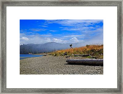 A Foggy Morning At Whiffin Spit Framed Print by Louise Heusinkveld