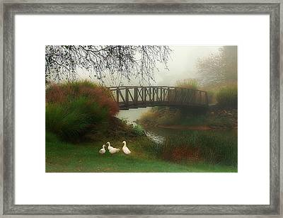 A Foggy Morning Framed Print by Tom York Images