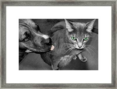 A Forbidden Love  Framed Print by Juliana  Blessington