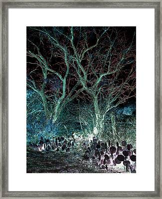A Ghost Story Told On March Road Framed Print